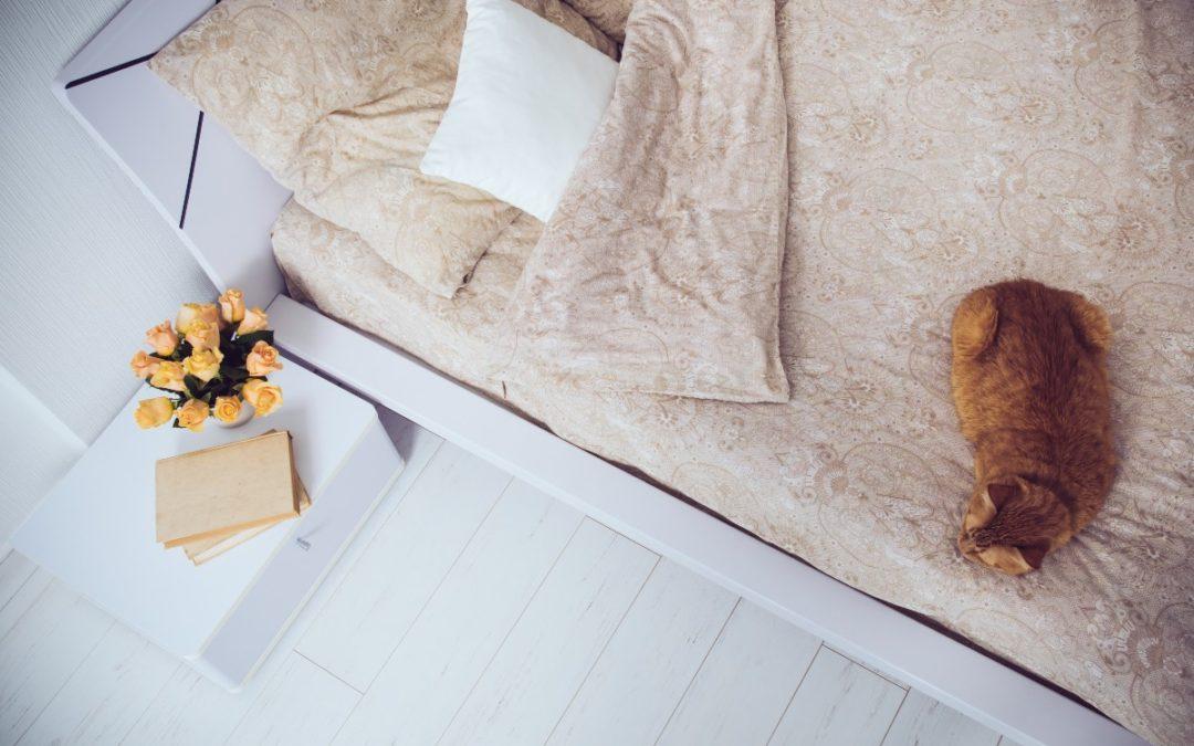 Parchet din lemn alb pentru eleganta casei tale